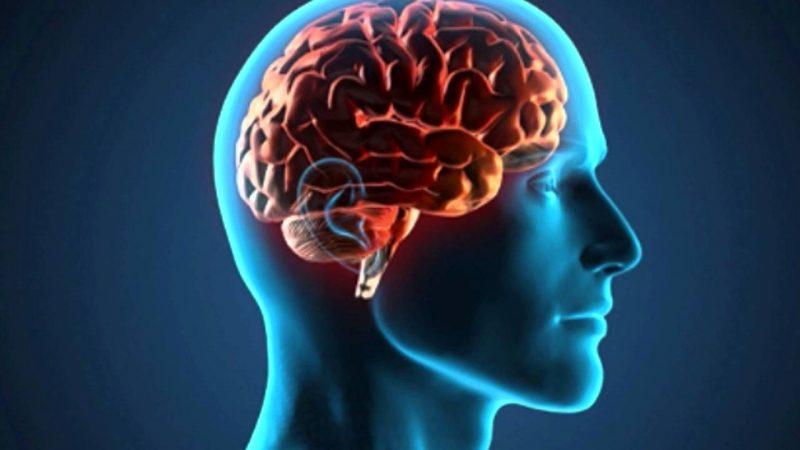 jejum faz bem para o cérebro